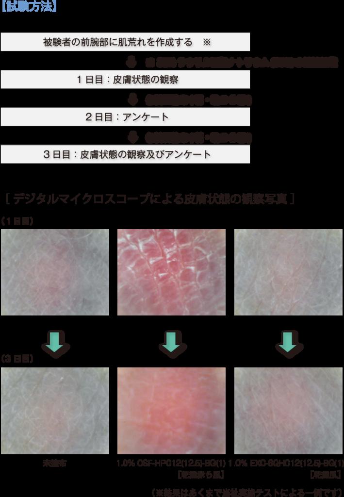 試験方法(図)